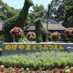 横浜の桜木町、野毛山動物園は無料でクオリティが高いのでおススメです!