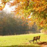 秋は気温も気分も変わりやすい季節!体調管理に注意!
